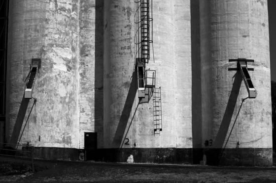 Cashup grain elevator 1