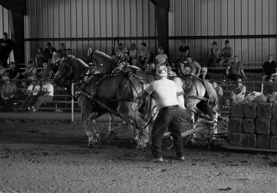 Horse pull 1  union fair