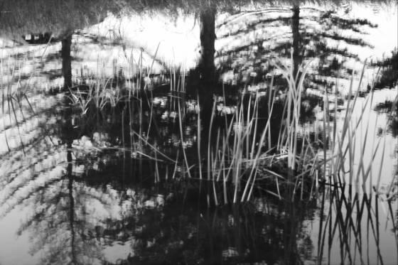 Water mirage