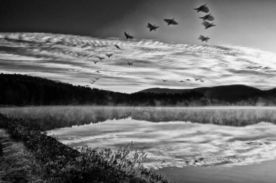 Cooper lake  2