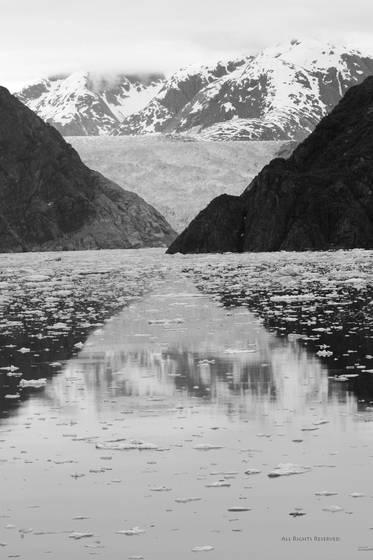 Glaciers of alaska jpg