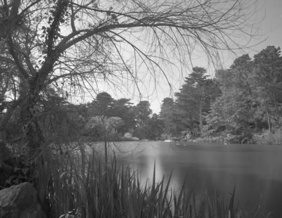 Stow lake b