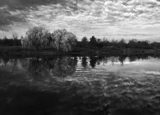 Lake artemisia