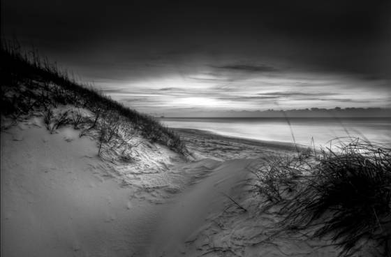 Dune and beach