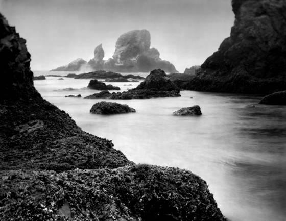 Oregon coast 9