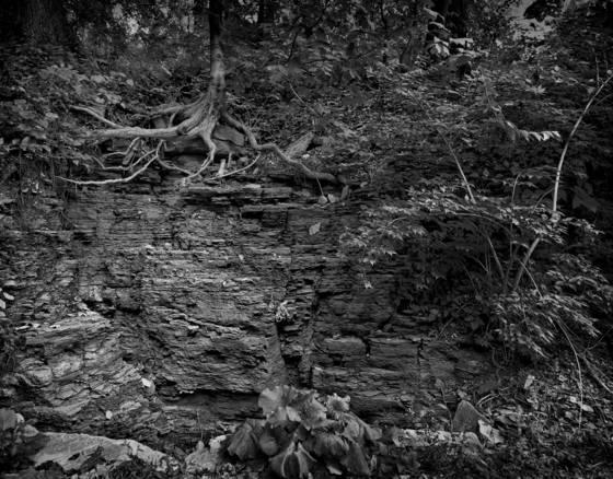 Frick rock shrine