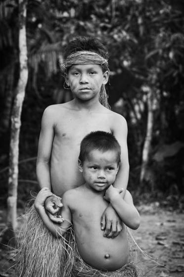 Brothers of the amazon