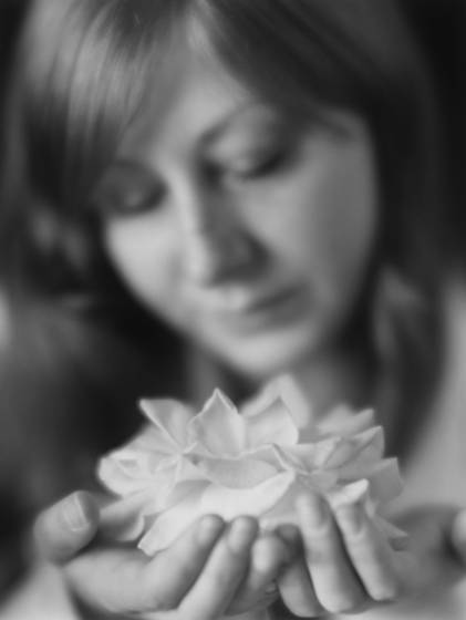Jessica s rose