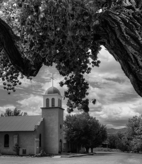 Village church and cottonwood tree