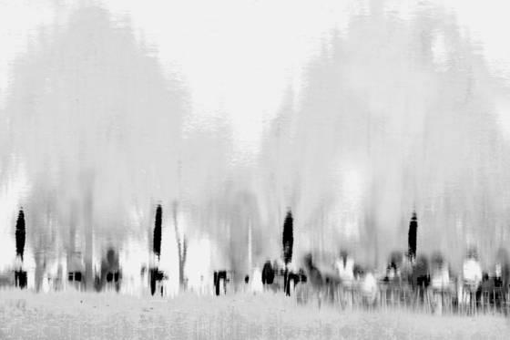 Untitled 13