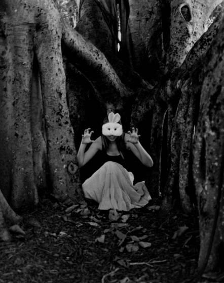 Mean bunny