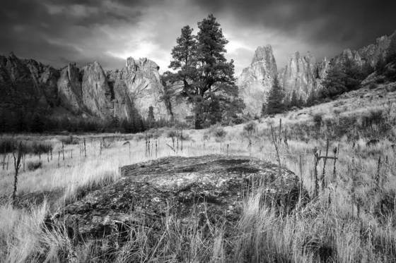 Basalt boulder and grass