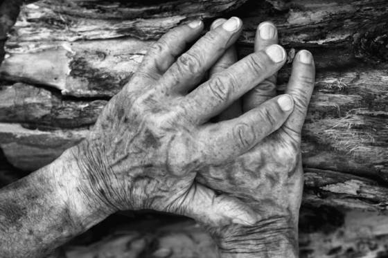 My father s hands
