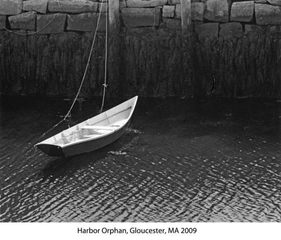 Harbor orphan