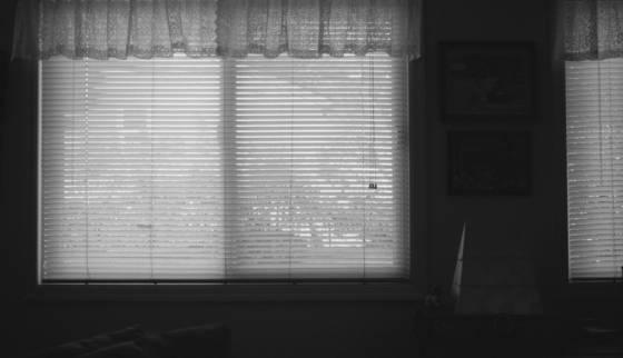 Johanna s window