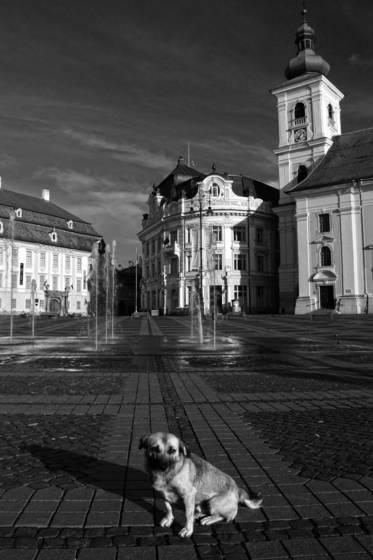 Sibiu 021