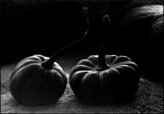 Pumpkins helsinki