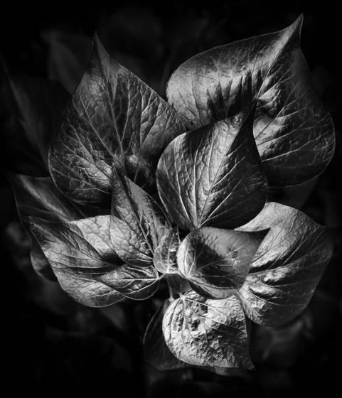 Flowmetal bouquet
