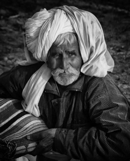 Old herder