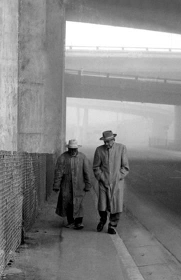 Fog walkers no 2