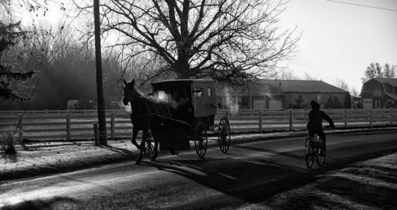 Amish transportation