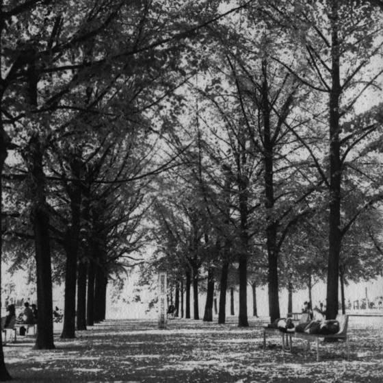 Park promenade