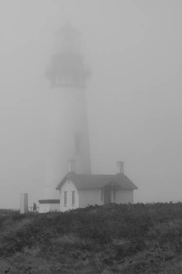 Oregon fog   yaquina head