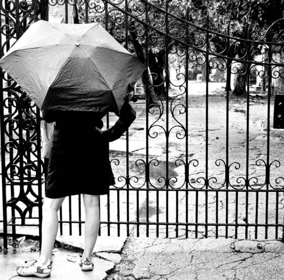 Garden distric rain