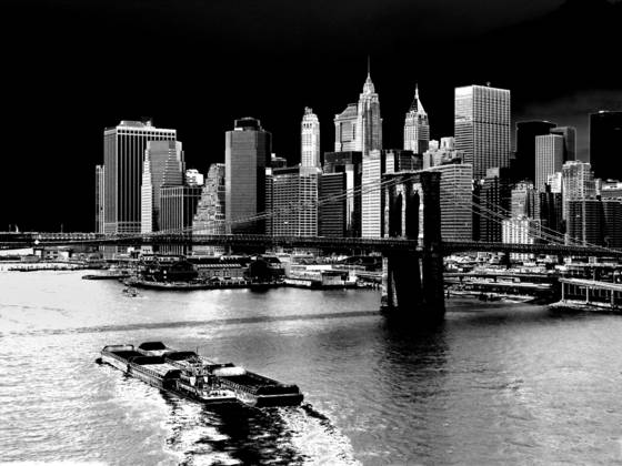 04 brooklyn bridge and lower manhattan   new york city