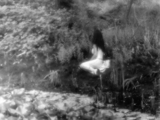 A faerie glen