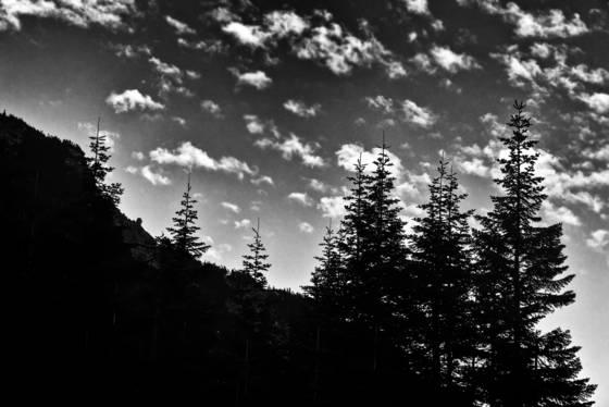 Cascades 8