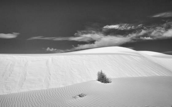 White sands 10