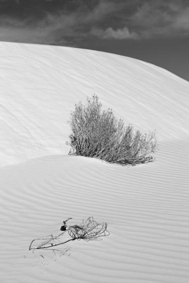 White sands 9