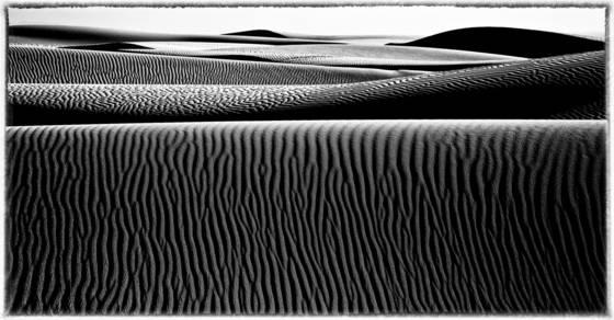 Pismo sand dune 10