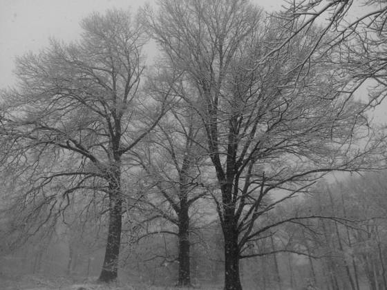First snow at washington s headquarters  valley forge
