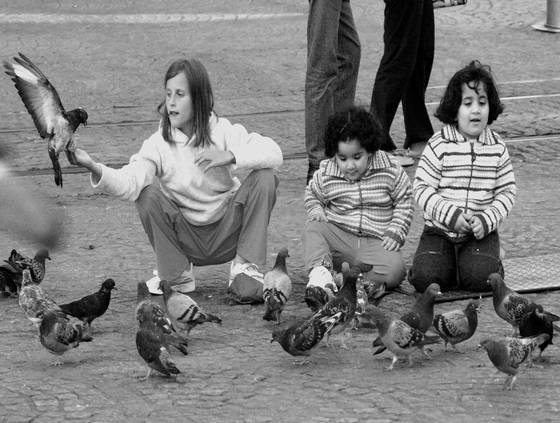Children and birds