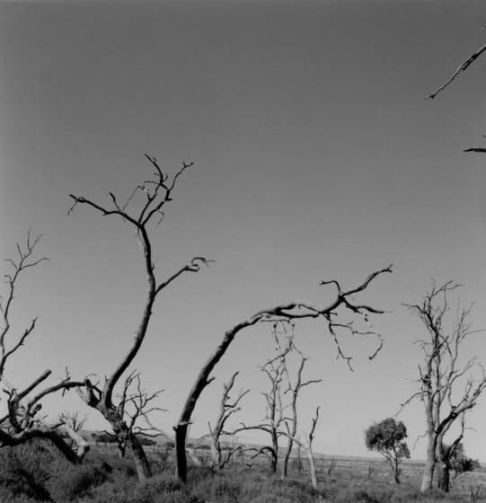 Untitled 10 western nsw 2011