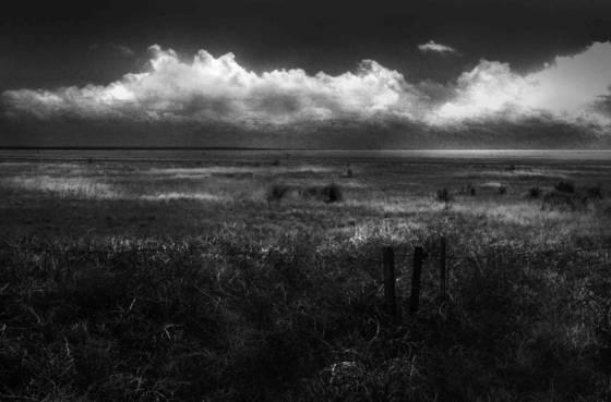 Open prairie