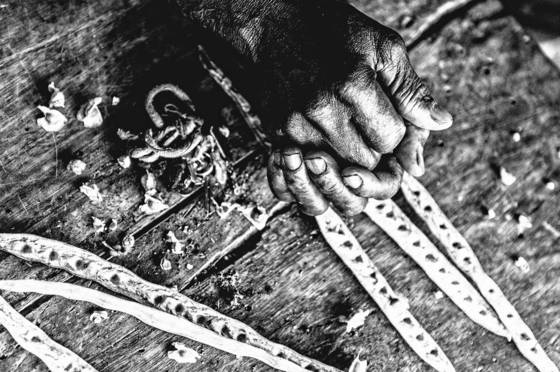 The hands of a healer