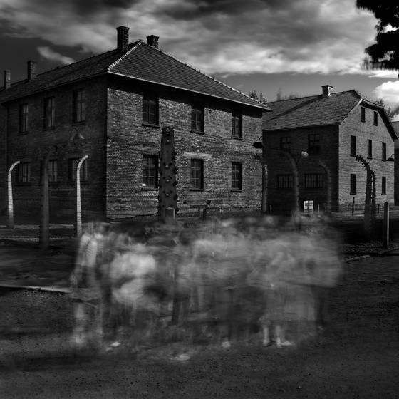 The ghosts of auschwitz no 12