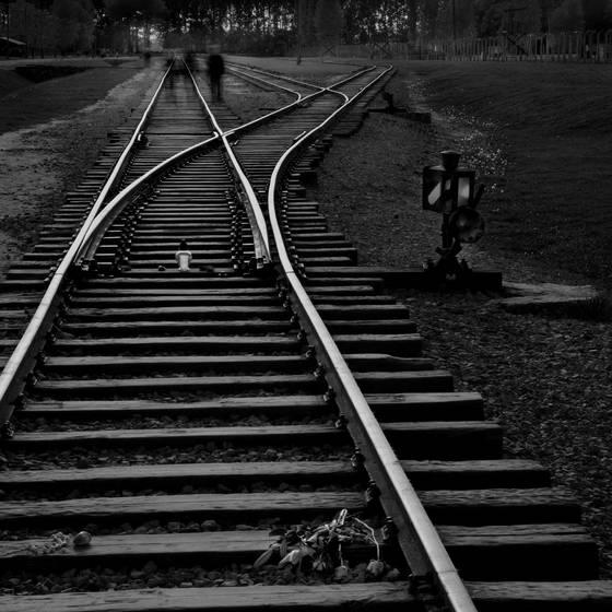 The ghosts of birkenau no 1