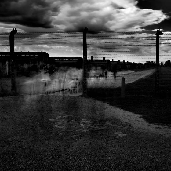 The ghosts of birkenau no 2