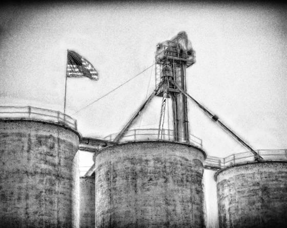Grain  9