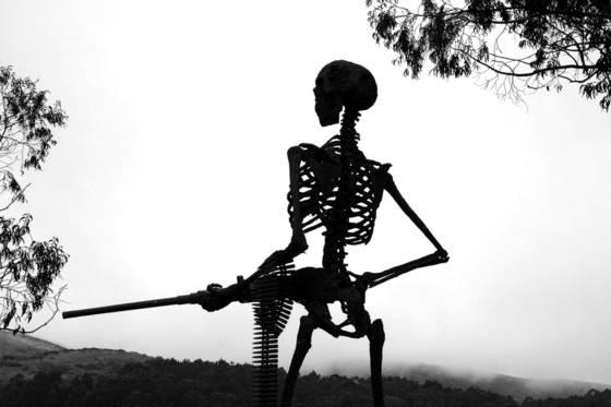 Skeletal sentinel