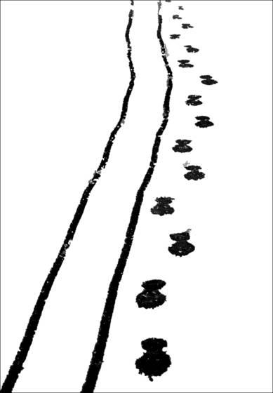 Footprints on a snowy driveway
