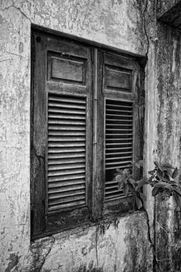 Windows of freedom h