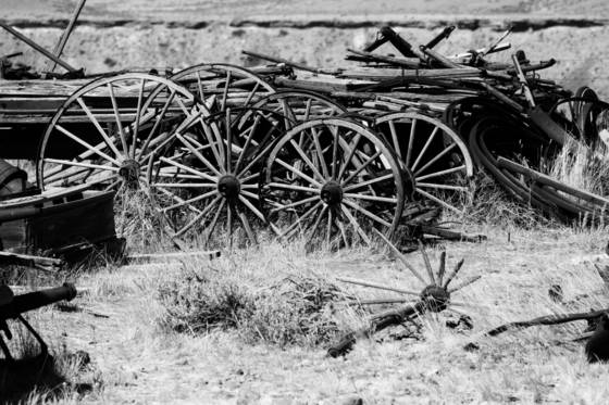 Wagon bone yard