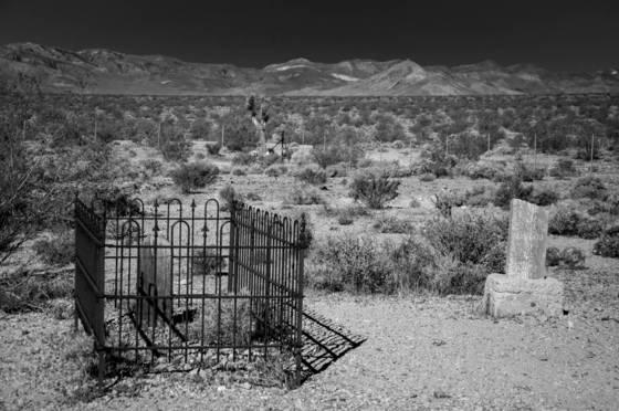 Bull frog cemetery 5