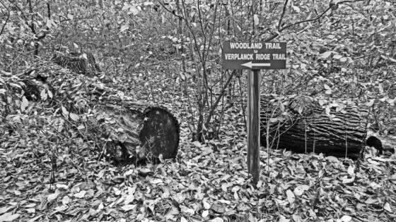 Stony kill farm trail sign