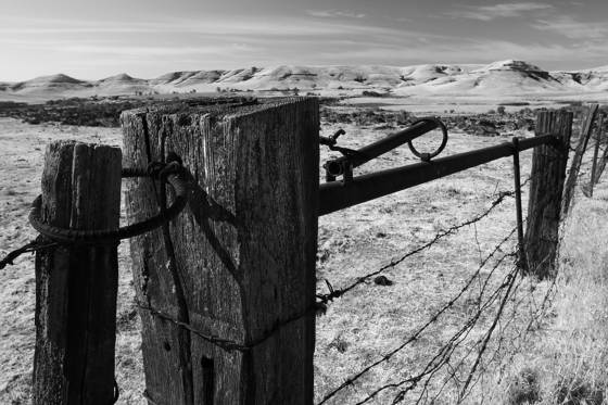 The working fence with a view